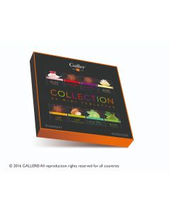 Galler Giftbox 24 Mini Tabletten